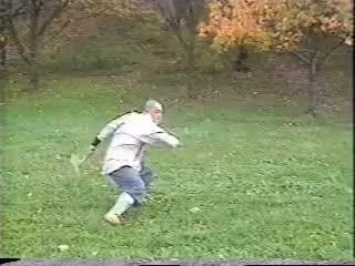 Watch and share Shaolin GIFs on Gfycat