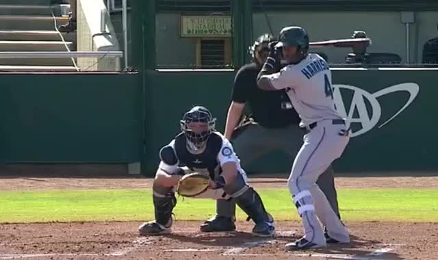 Watch monte harrison rbi single afl GIF by Ely Sussman (@realely) on Gfycat. Discover more arizona fall league, highlights, hit, marlins, mlb, monte harrison, prospects GIFs on Gfycat