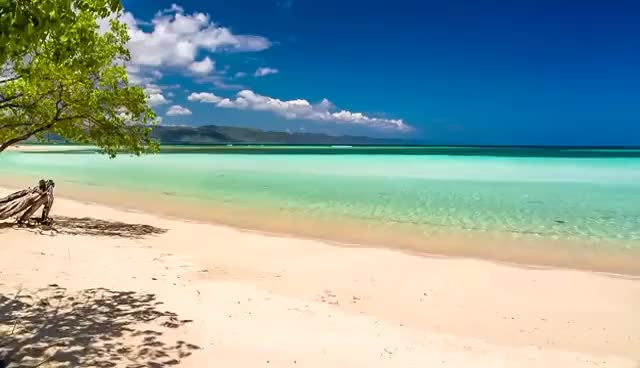 Watch and share Beach Sea 7   Video Background HD 1080p GIFs on Gfycat