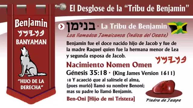 El Desglose de la -Tribu de Benjamin- (Breakdown) GIFs