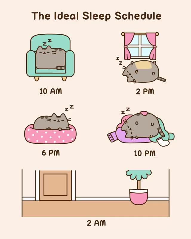 Watch and share Pusheen GIFs and Cat GIFs by nitori on Gfycat