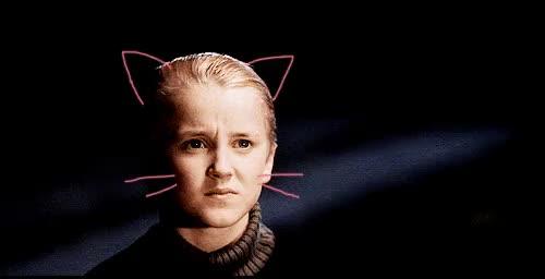Watch and share Draco Malfoy GIFs and Гарри Поттер GIFs on Gfycat