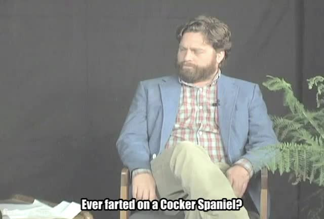 Between Two Ferns with Zach Galifianakis, FoD, Funny or Die, Funnyordie, between two ferns, between two ferns with zach galifianakis, fod, funny or die, funnyordie, jimmy kimmel, zach galifianakis, Farted on GIFs
