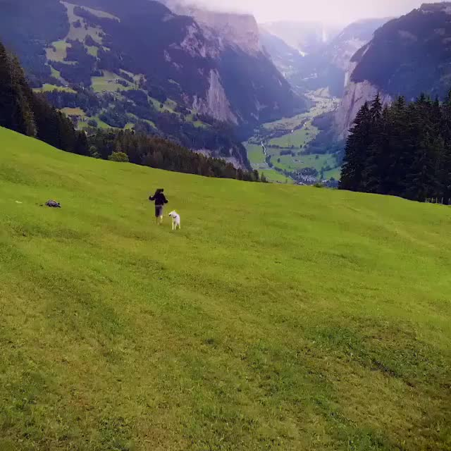 Watch and share Lauterbrunnen, Switzerland GIFs by t-h-a-t-o-n-e-8-6 on Gfycat