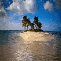Watch and share Island GIFs on Gfycat