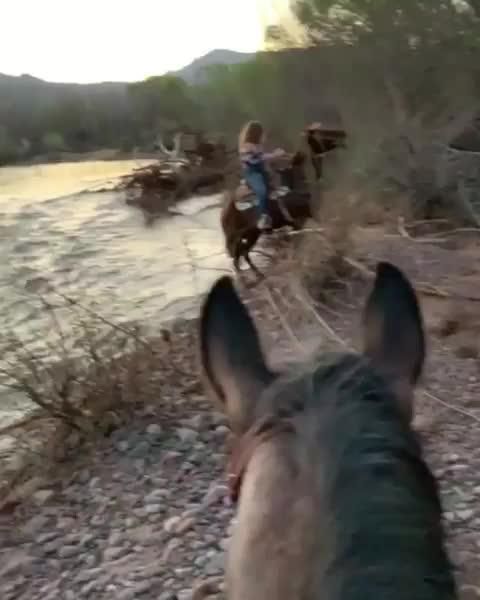 Girl vs horse GIFs