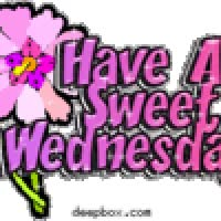 Watch and share Wednesday animated stickers on Gfycat