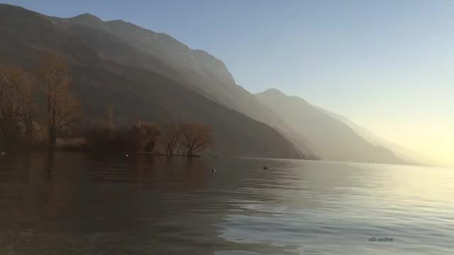 Watch and share Lago Di Garda GIFs and Nillo Zamboni GIFs by zamboni nillo on Gfycat