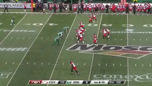 Watch and share Cfl GIFs and Nfl GIFs by spaceraptor on Gfycat