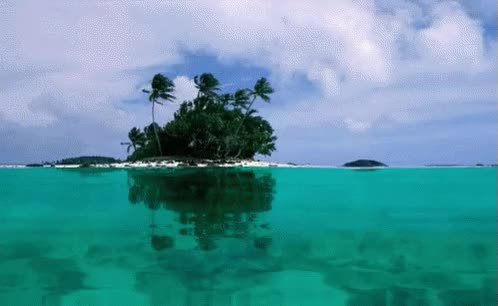 Watch Island GIF on Gfycat. Discover more related GIFs on Gfycat
