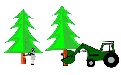 Watch and share Mature Trees Are Selected By A Forestry Worker. Only Older Trees Are GIFs on Gfycat