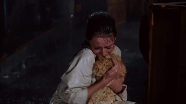 Watch this cat GIF by The GIF Smith (@sannahparker) on Gfycat. Discover more Audrey Hepburn, breakfast at tiffany's, cat, cat named cat, holly golightly GIFs on Gfycat
