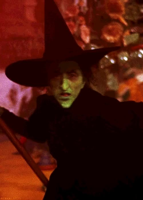 Watch Wicked witch Melting GIF on Gfycat. Discover more related GIFs on Gfycat