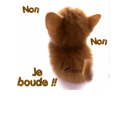 Watch and share Ecrire Un Commentaire animated stickers on Gfycat
