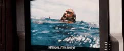 Watch Cast Away GIF on Gfycat. Discover more related GIFs on Gfycat