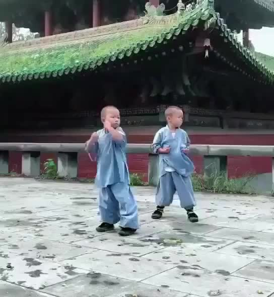 Watch and share Chinese Kids Training Martial Arts GIFs on Gfycat