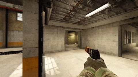 counterstrike-global-offensive GIFs