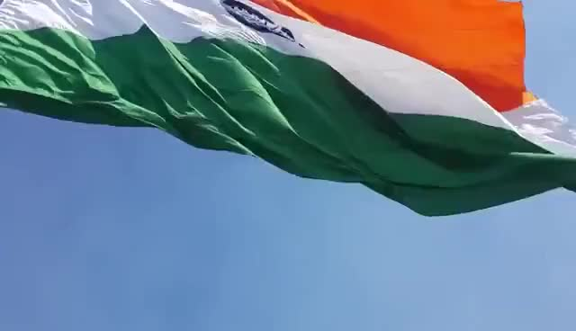 Watch and share Indian Flag (Tringa) At Central Park GIFs on Gfycat