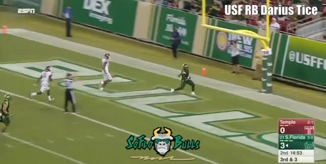 Watch and share South Florida GIFs and Usf Football GIFs by SoFloBulls on Gfycat