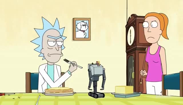 and, butter, morty, robot, rock, Rickandmorty? GIFs