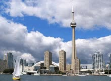Watch and share Toronto GIFs on Gfycat