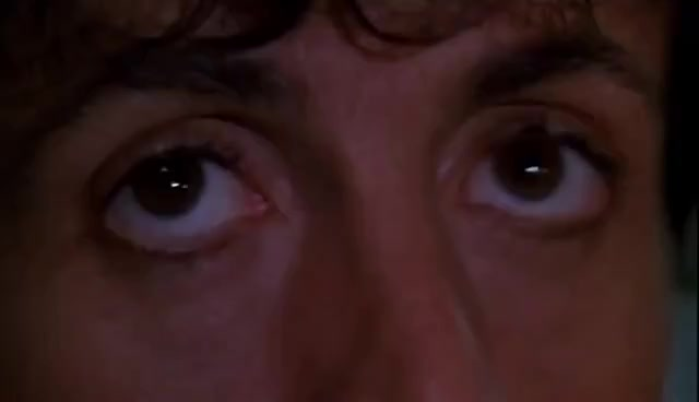 Watch this trending GIF on Gfycat. Discover more cobra, stallone GIFs on Gfycat