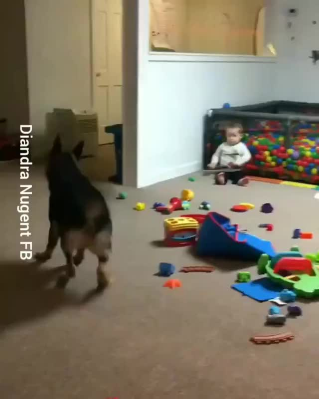 Watch and share Source: Diandra Nugent On Facebook GIFs by Nomorefoxgiven on Gfycat