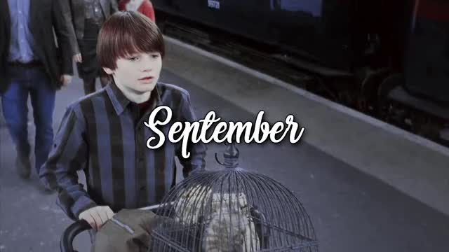 Watch September GIF on Gfycat. Discover more related GIFs on Gfycat