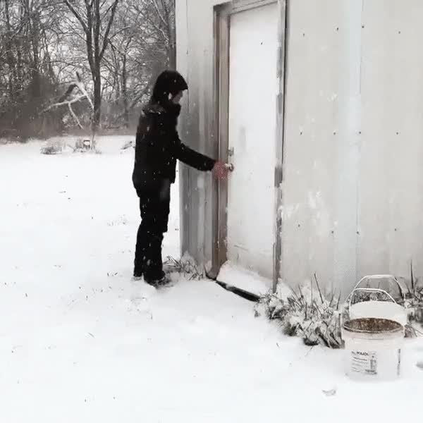 Watch and share Snow Ducks GIFs by tarteaucitrons on Gfycat