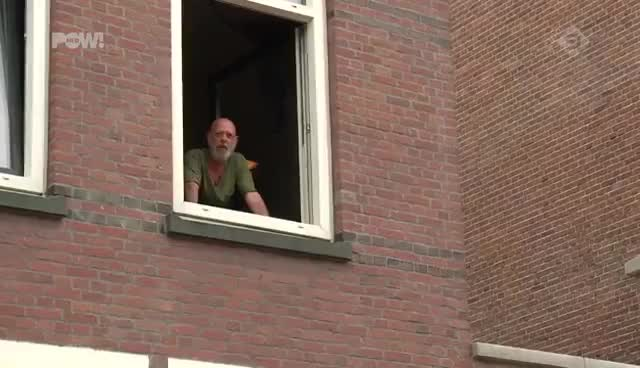 Watch and share Dat Je Gewoon Je Pan Bami Naar Beneden Kan Pleuren! GIFs on Gfycat