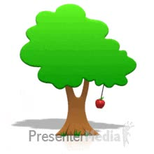 Watch and share ID# 452 - Tree Apple Swinging GIFs on Gfycat