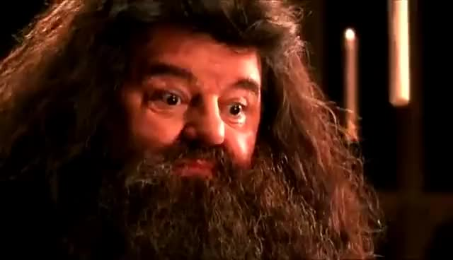 Watch and share Hagrid GIFs on Gfycat