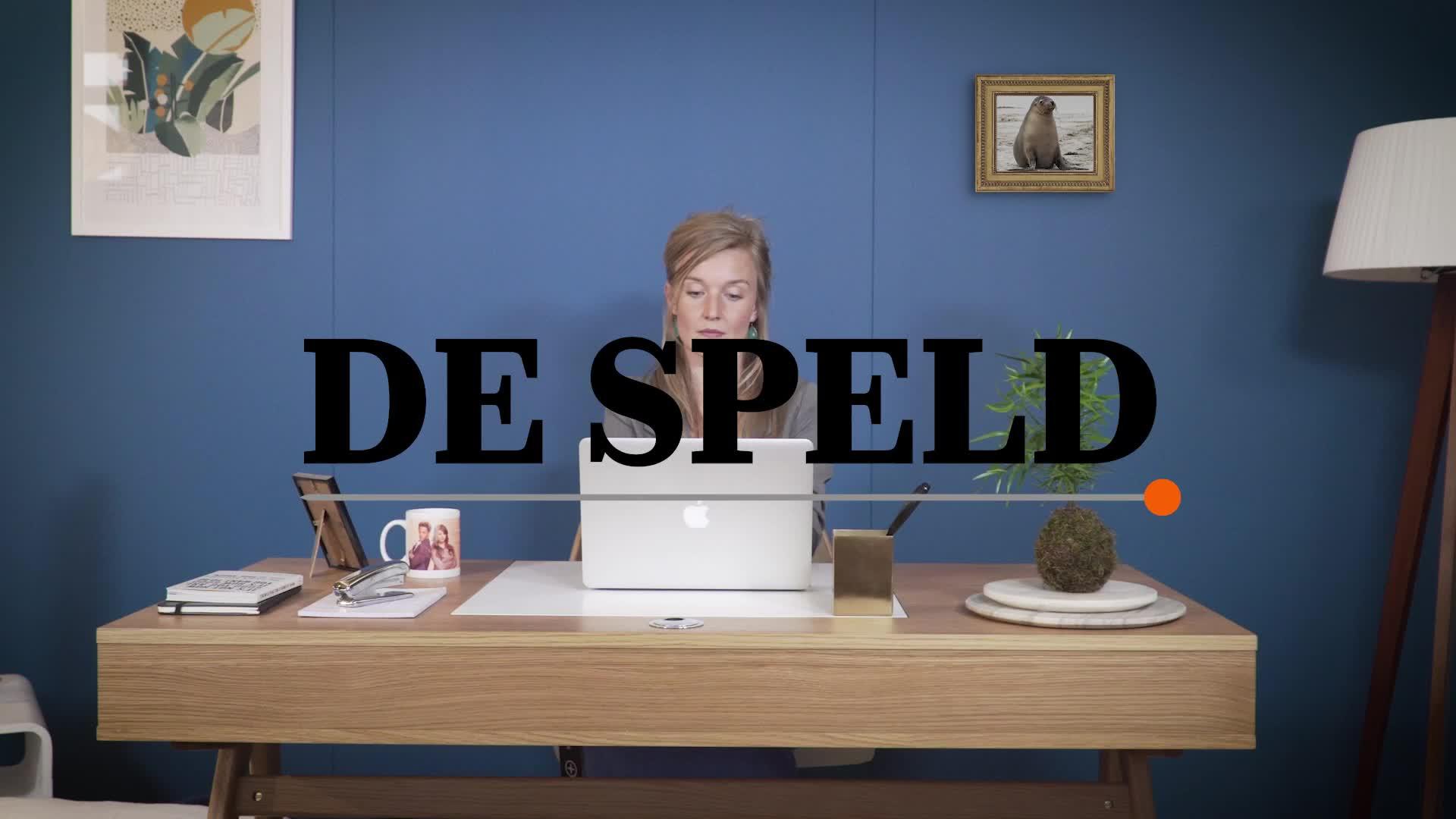 5 tips, Bob Stoop, Comedy, De Speld, Hanneke Last, Humor, Satire, afleiding, clean desk policy, prioriteiten, productief, tips, zeeleeuw,  GIFs