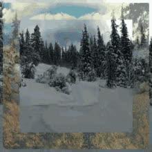 Skiing Powder GIFs