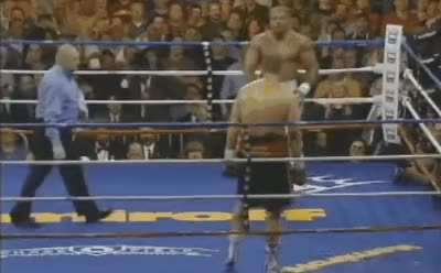 "Watch [GIF] ""Shannon Briggs had been taunted and called Pineapple-Head by Liakhovich. In the twelfth and final round with five seconds left, Briggs was down on all scorecards and needed a COMPLETE knockout to defeat the WBO Champ."" This Day In Boxing Nov 4 2006. 10 Year Anniversary. (reddit) GIF on Gfycat. Discover more Boxing, boxing GIFs on Gfycat"