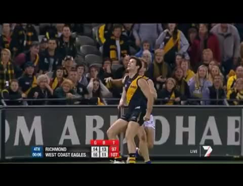 Watch Beau Waters GIF on Gfycat. Discover more AFL, Beau Waters, Richmond Tigers, Screamer, West Coast Eagles GIFs on Gfycat