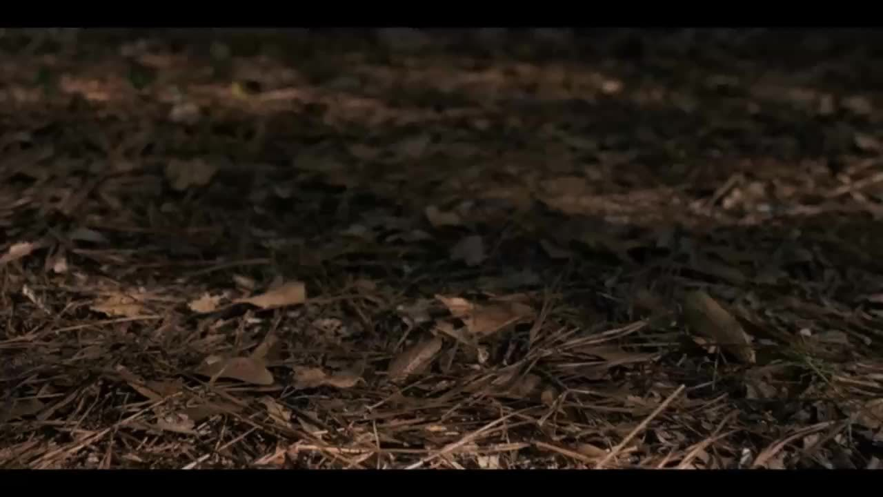 strangerthings, Eleven's walk GIFs