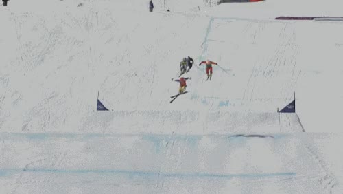 Watch and share Ski Fail GIFs on Gfycat