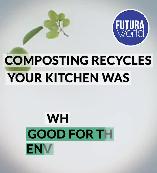 Watch and share Environment Compost Bin (FUTURA) GIFs on Gfycat
