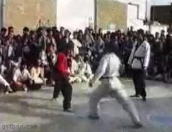 Watch and share Kung Fu GIFs on Gfycat