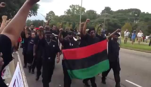 Black Panthers GIFs