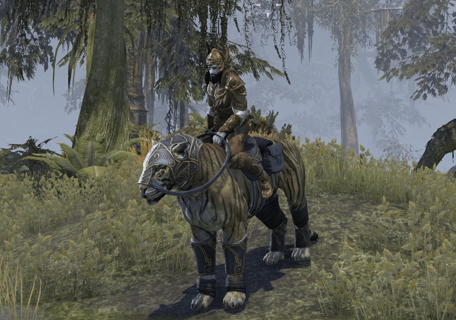 elderscrollsonline, Senche-Leopard with armor and greaves (+20 stamina, and +20 speed) (reddit) GIFs