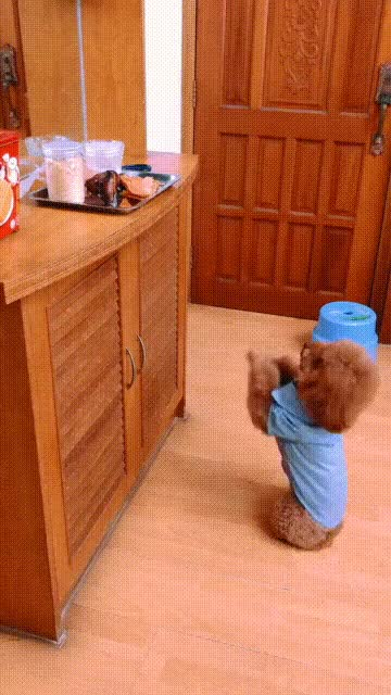 Watch and share Smart GIFs and Cute GIFs by soees on Gfycat