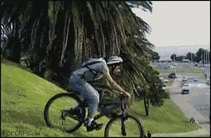 Watch and share Biking Into Traffic Fail GIFs on Gfycat