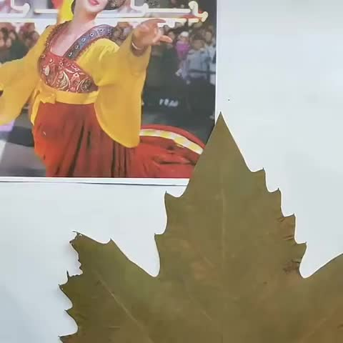 Watch and share Incredible Leaf Art GIFs by Mahmoud M. Mahdali on Gfycat
