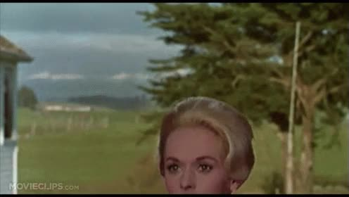Watch and share Tippi Hedren GIFs on Gfycat