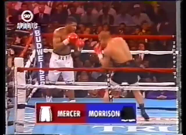 Watch Ray Mercer vs Tommy Morrison GIF on Gfycat. Discover more boxing, enoughsandersspam, ko GIFs on Gfycat