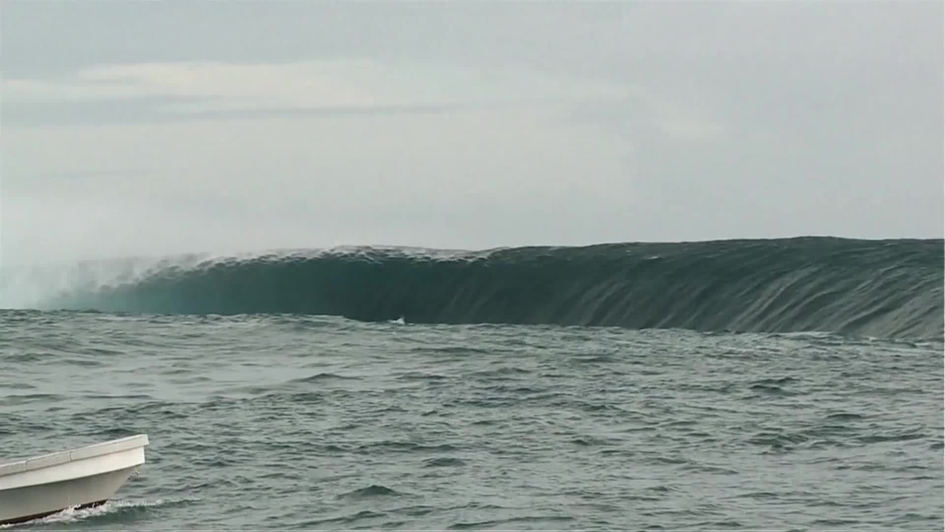 AnimalsBeingJerks, HeavySeas, gifsthatendtoosoon, once in a lifetime wave at Fiji's Cloudbreak. 2012 GIFs