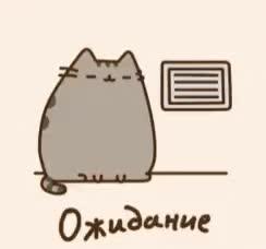 Watch and share Ожидание Жду Скучаю Скучно Кот Пушин GIFs on Gfycat