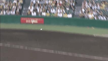 baseball, nonononoyes, npb, BruisedInfamousAnnelid GIFs